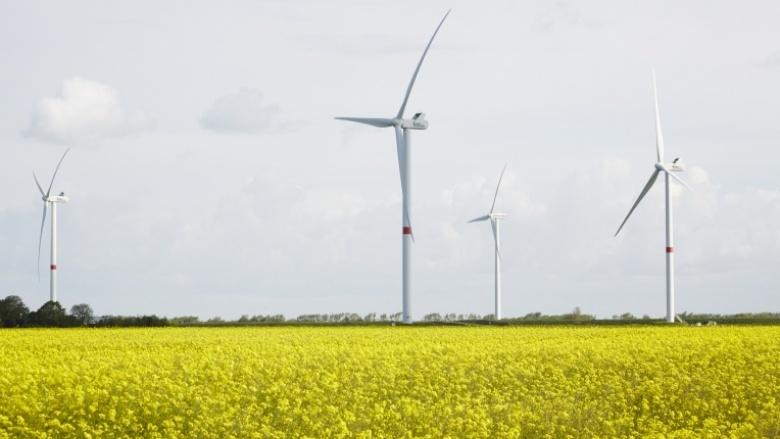 Vorrang für Erneuerbare Energien